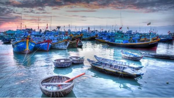 渔港智慧管理解决方案