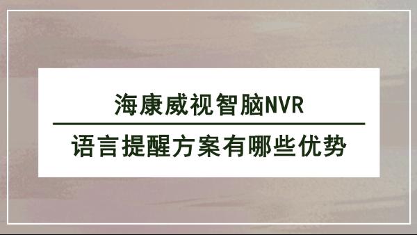 海康威视智脑NVR语言提醒方案