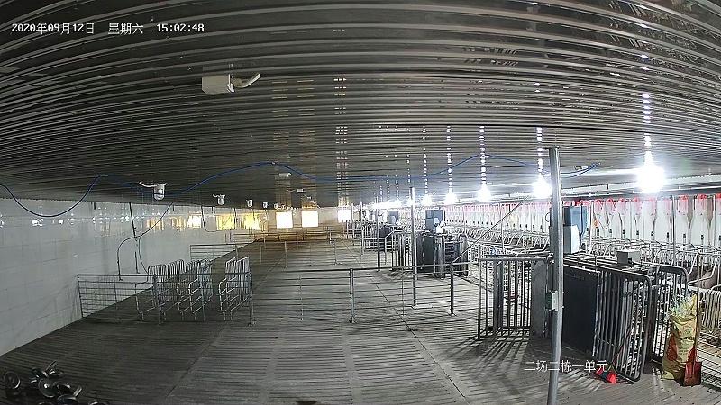 养猪场监控安装