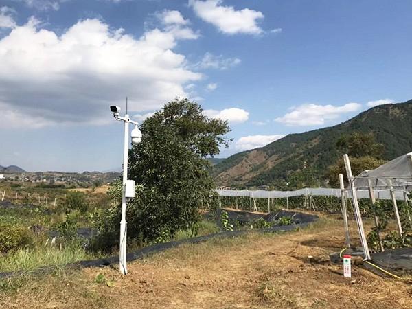 西昌市德昌县巴洞凉山州品新农业开发有限公司葡萄园基地安防监控项目