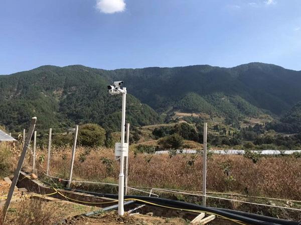 生态葡萄园基地视频监控