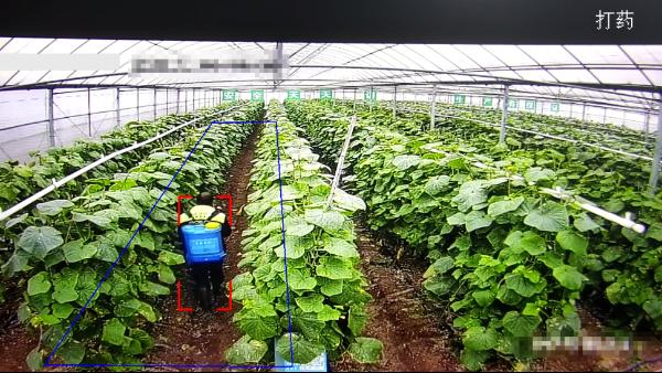 农产品智慧监管解决方案
