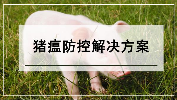 猪瘟防控解决方案