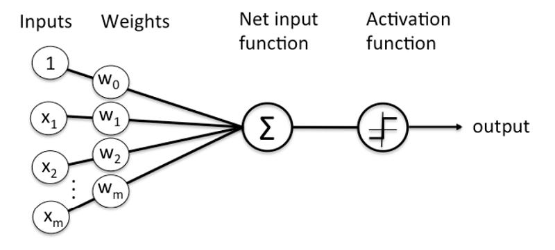 神经网络拓图